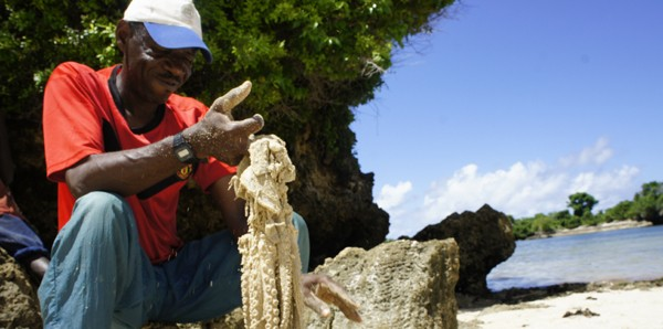 Pemba tours and excursions