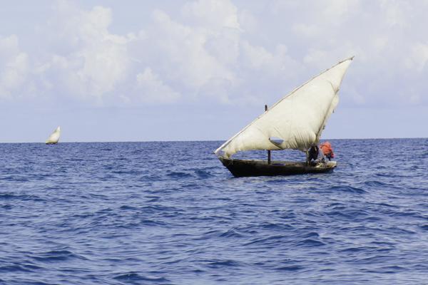 Zanzibar Safari Blue Cruise