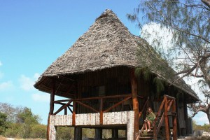 Pemba Lodge is situated in the Shamiani Island rigth in the Pemba coastline, Zanzibar