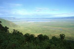 Ngorongoro crater safari on a Tanzania safari